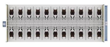 Stajnia z krowami na górze formy 3d renderingu ilustracja wektor