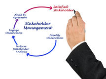 Stakeholder Management Royalty Free Stock Image