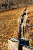staket Arkivbilder