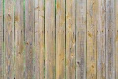 Staket av bruna träbrädeplankor bakgrund, textur Royaltyfri Foto
