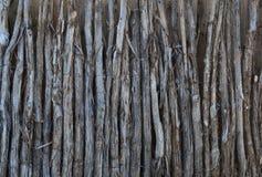 Staket av Cedar Limbs arkivfoton