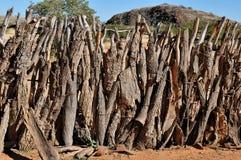Staket av en kraal Ovahimba arkivfoto