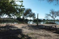 Staket av trä i sjön arkivfoton