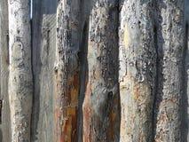 Staket av träbräden royaltyfri fotografi
