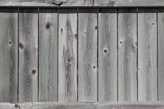 Staket Background Texture Royaltyfria Foton