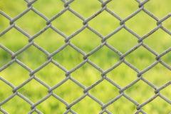 Staket för Chain sammanlänkning med gräsmattabakgrund Fotografering för Bildbyråer
