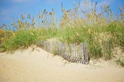 Staket för sanddyn och strandgräs arkivfoto