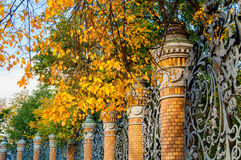 Staket för St Petersburg höstsikt av den Mikhailovsky trädgården i St Petersburg, Ryssland i solig dag för höst royaltyfri foto