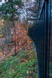 Staket And Fall Trees royaltyfri fotografi