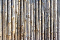 Staket från stammar av träd royaltyfri fotografi