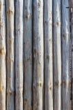 Staket från stammar av träd fotografering för bildbyråer