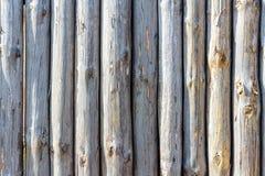 Staket från stammar av träd royaltyfri foto