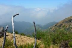 Staket i bergen royaltyfri foto