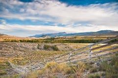 Staket i Colorado Rockies Royaltyfri Fotografi