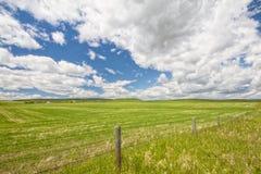 Staket Line Meadow Landscape Arkivfoton
