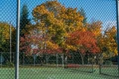 Staket och Autumn Trees 2 royaltyfri bild