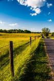 Staket och lantgårdfält längs en väg i Antietam medborgareslagfält arkivbild