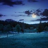 Staket på äng nära skog på natten Royaltyfri Fotografi