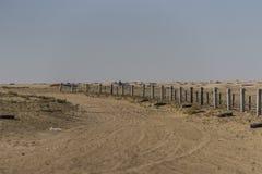Staket på den sahara öknen arkivfoto