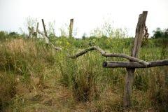 Staket på en heathland Royaltyfria Foton