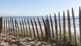 Staket på en sanddyn Arkivbilder
