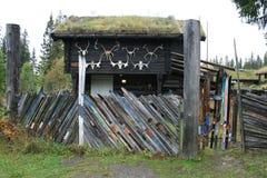 staket skidar Royaltyfria Foton