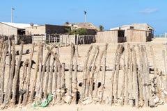 Staket som göras av kaktuns fotografering för bildbyråer