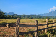 Staketlantgård på Laos Royaltyfri Bild