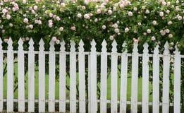 staketpostering Fotografering för Bildbyråer