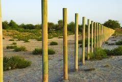 staketstål Arkivbilder
