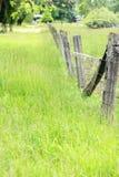 staketstolpar Arkivfoto
