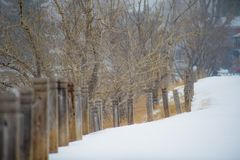 Staketstolpar i för vinter snöfall utomhus Arkivfoton