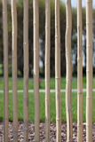 staketträdgård Fotografering för Bildbyråer