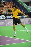 Stakhovsky Sergey Ukrainian Star (4) Stock Photos