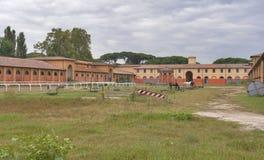 Stal en troggen voor paarden op een landbouwbedrijf in Toscanië Royalty-vrije Stock Foto's