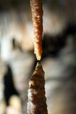 stalactite подземелья Стоковое Фото