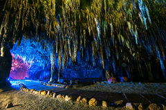 Stalactite in cave interior with color light at Khao Bin cave Stock Images