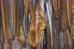 Stalactite cave, Israel Stock Image