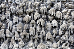 Stalactite rock Stock Images