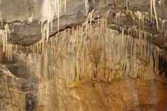 stalagmite stock photos royalty free stock images