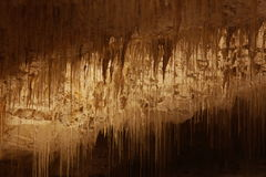 Stalactites royalty free stock photo