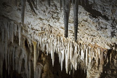 Stalactites. Sorek Cave, Israel, is famous for its beautiful formations of stalactites and stalagmites royalty free stock image