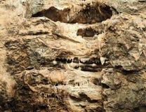 stalactites Natuurlijke rots royalty-vrije stock foto's