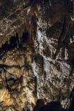 Demanovska Cave of Liberty, Slovakia. Stalactites and stalagmites in the Demanovska Cave of Liberty. Slovakia Royalty Free Stock Photo