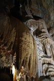Stalagmite, cavernes de Jenolan Photos libres de droits
