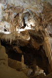 Stalagmite, Jenolan Caves Stock Images