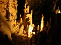 Stalagmites. The picture was taken in the Caves of Postojna (Postojna Jama) in Slovenia. 1 mm of such thing grows in 10 to 20 years Royalty Free Stock Image