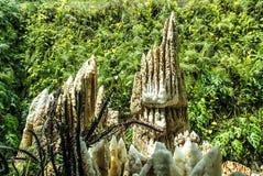 stalagmites fotografia stock