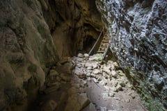 Stalagmites de caverne Images libres de droits