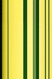Stalk of bamboo  (Latin Bambusoideae) Stock Images